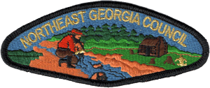 Northeast Georgia Council Image