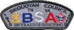 Sequoyah Council Image